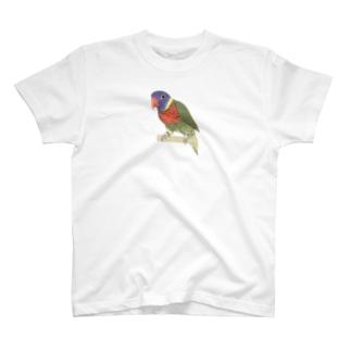 色合いが綺麗なゴシキセイガイインコちゃん【まめるりはことり】 T-shirts