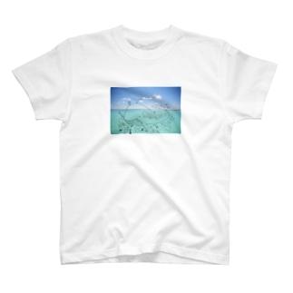 海のなかまたち(写真合成ver) T-Shirt