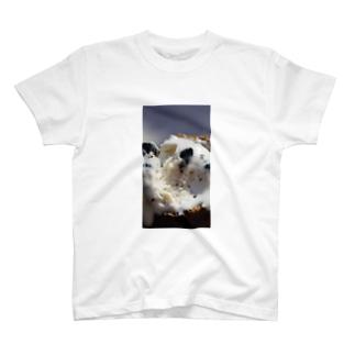 クッキーアンドクリーム T-shirts