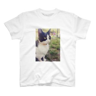 お昼のお散歩ねこ T-shirts