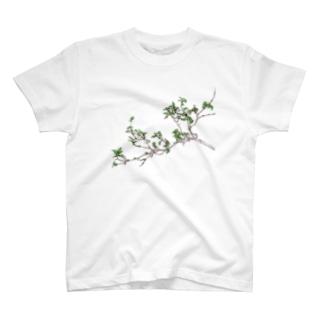 小ぶりの枝 T-shirts