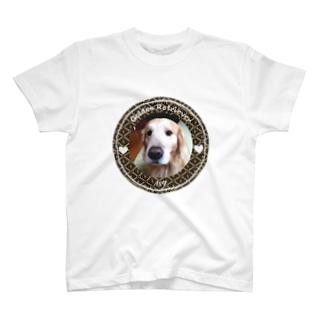 ゴールデンレトリバー ハク T-shirts