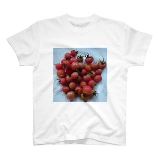 トマトが食べたかったのです。 T-shirts