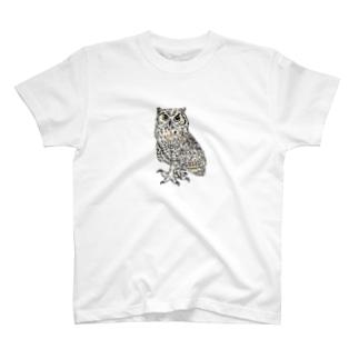 ふくろう29 アメリカワシミミズク(カラー) T-shirts
