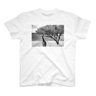 マサイキリン(白黒) T-shirts
