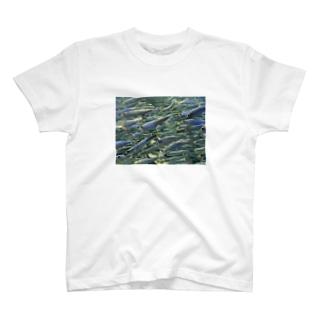 群れ T-shirts