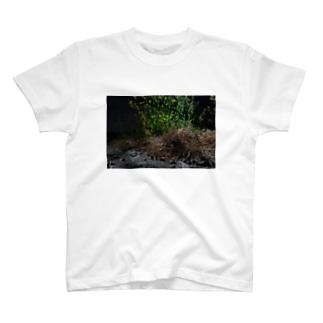 雑草 T-shirts