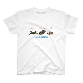 ニャンコ3匹でソーシャルディスタンス😸 T-shirts