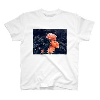 ローズ T-shirts