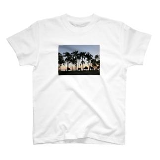 WAIKIKI T-shirts