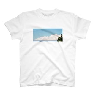 36°c T-shirts