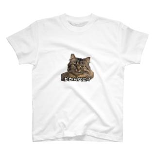 パピコのだからなに?Tシャツ T-shirts