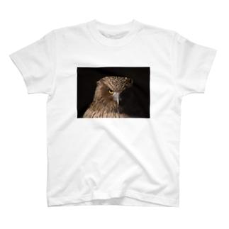 シマフクロウ T-shirts