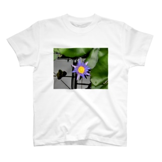 蓮の目 T-shirts