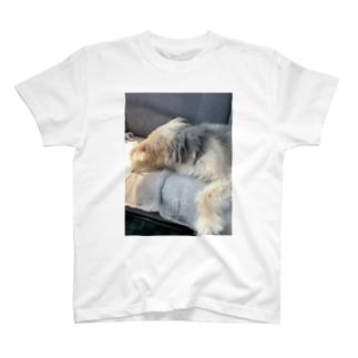 愛犬クロちゃん 〜睡眠中〜 T-shirts