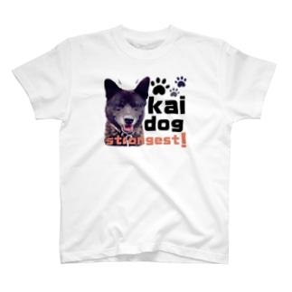 甲斐犬ネームなし T-shirts