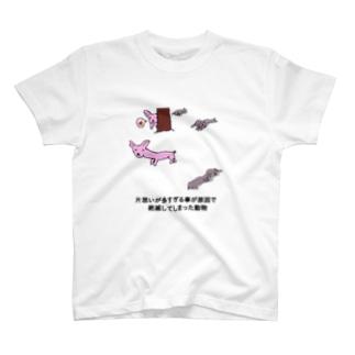 動物Tシャツ T-Shirt