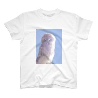 モリフクロウ雛 T-shirts