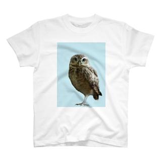 アナホリフクロウ T-shirts