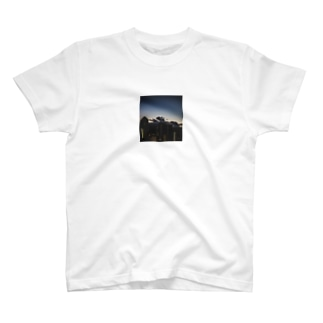 ふぉとT IN HAWAII T-shirts