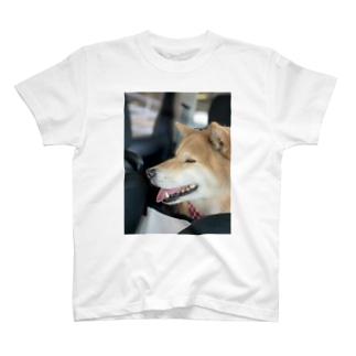 まめちゃん T-shirts