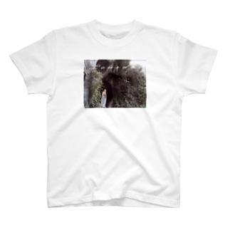 ルルドのマリア像 T-shirts