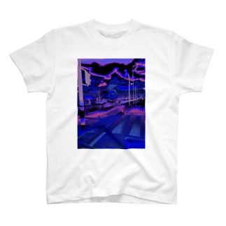 biwa lake  T-shirts