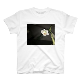 お花パフパフちゃん T-shirts