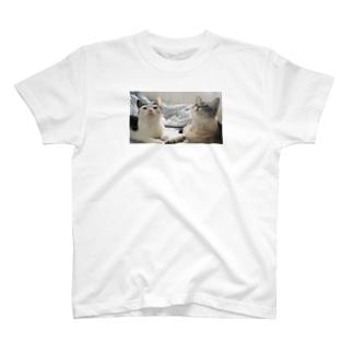 こめことししょう うえむき T-shirts
