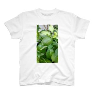 もう少しのレモンちゃん T-shirts
