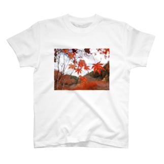 紅葉 T-shirts