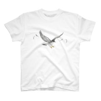 隼ファルコン【まめるりはことり】 T-shirts