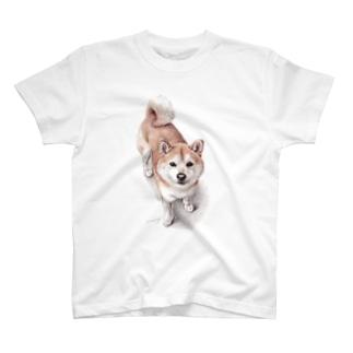 柴犬6 T-shirts
