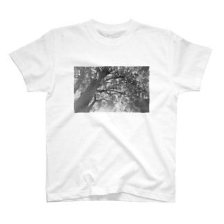 木漏れ日の下で T-shirts