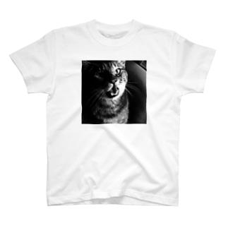 マジギレ T-shirts