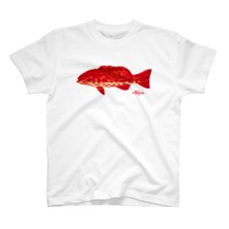 Riki Design (Okinwa Fishing style)のアカジン T-shirts