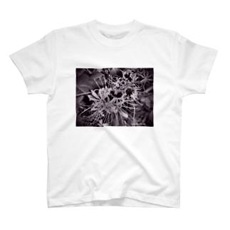 ヒガンバナ T-shirts