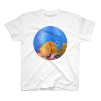 国東おしり岩 T-shirts