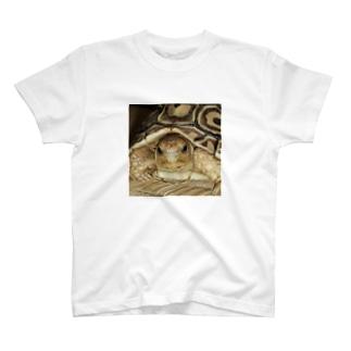 キリッとしてるジョニー T-shirts