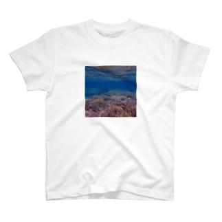 ネイチャーパステル1 T-shirts
