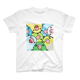 みっちりむっちり過密マメルリハさん【まめるりはことり】 T-shirts