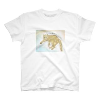 当たりは渡さない猫 T-shirts