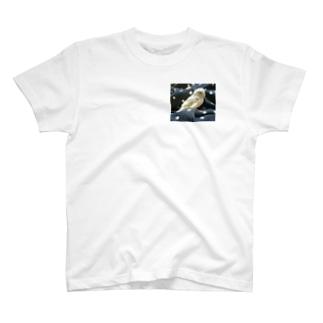 マメルリハ T-shirts