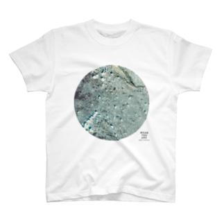 東京都 西東京市 Tシャツ T-shirts