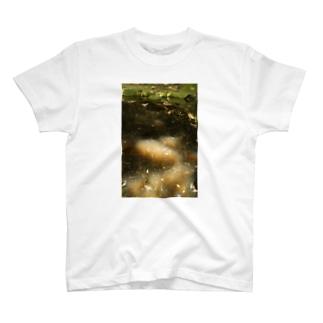ポンドシャイニング フォトティシャツ T-shirts