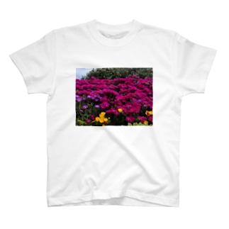 標準の画像 T-Shirt