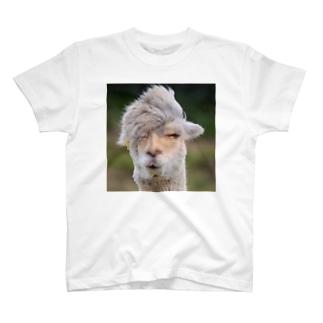 みろくの実写版つえパカ T-shirts