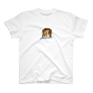 オオカワウソさん T-shirts