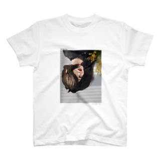 mimosa. T-shirts