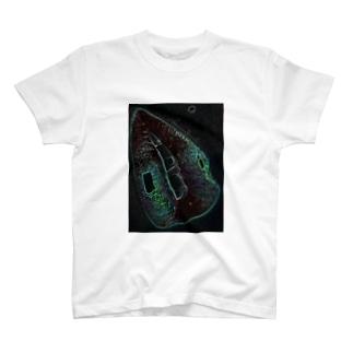 Green Rip T-Shirt